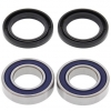 AllBalls Lenkkopflager Kit Steering Bearing and seal Kit 25-1079 für Gas Gas, Kawasaki, Suzuki